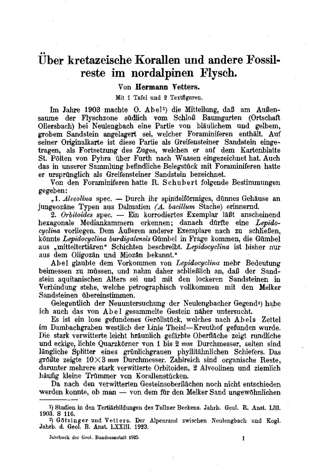 Über kretazeische korallen und andere fossilFossil Fossil 2046 S Glnzendes Schwarz Mit Grauer Verlaufslinse P 549 #7