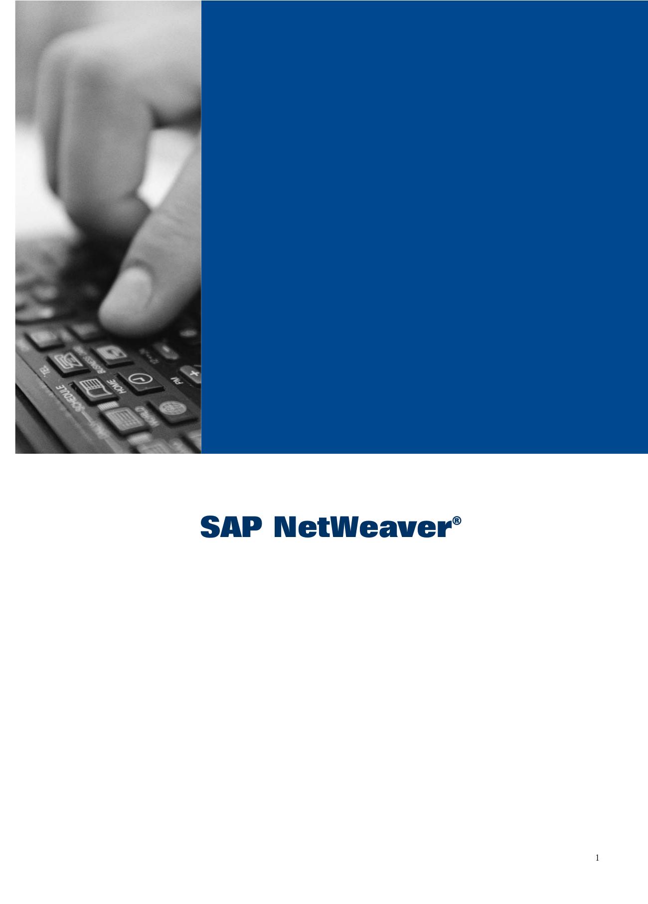 SAP NetWeaver - SAP Service Marketplace