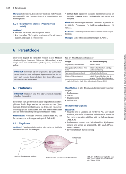 PDF - Thieme Connect