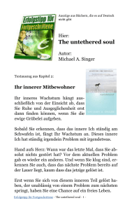 The untethered soul - I-Bux-Shop