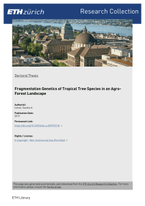Fragmentation Genetics of Tropical Tree Species in an Agro