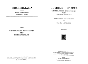 husserliana - sdvig press