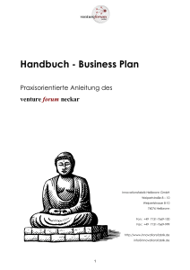 Handbuch Business Plan VFN