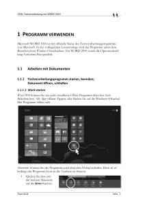 Word2010 mit Win8