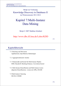 Multi-Instanz Data Mining