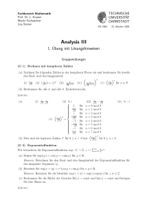 Analysis III - TU Darmstadt/Mathematik